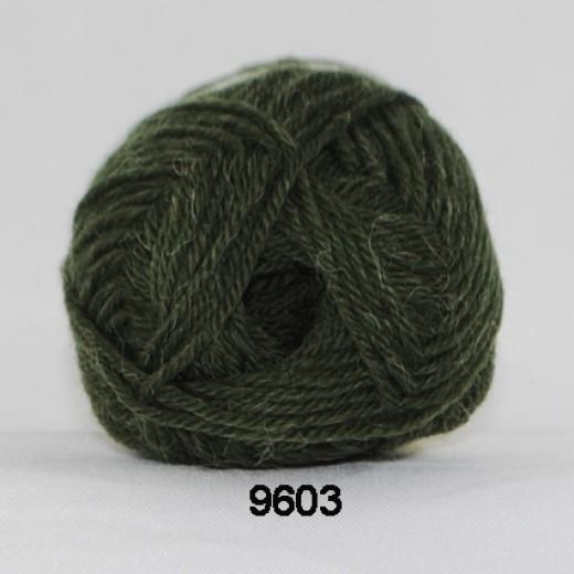 VidalAlpaca-321